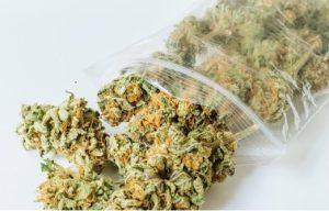 zip lock weed
